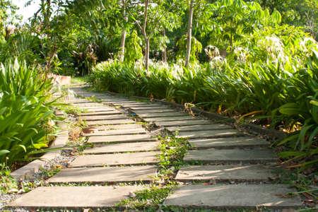 sidewalk goto the way,sidewalk in the park Stock Photo - 7220921