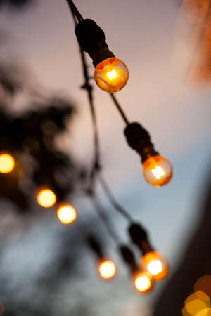 Light bulb on the tree, the orange light from the lamp. The decoration is long. Stock Photo - 12266026