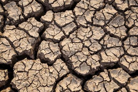 lack of water: Drought has broken ground cracks because of lack of water.  Stock Photo