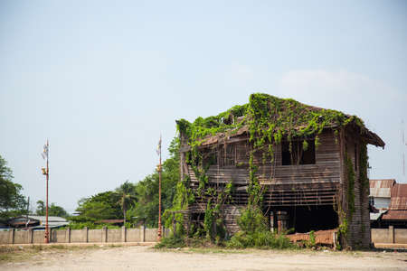 Decaying dilapidated old house. The ivy covered house. Stock Photo - 18510477
