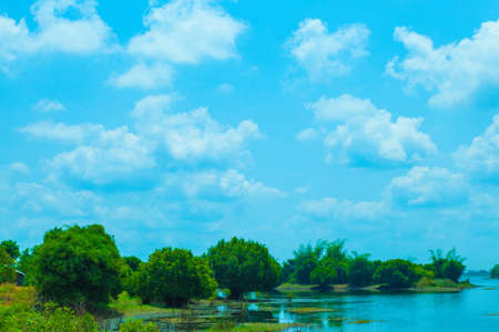 River and its banks. Trees along both sides of the water. Sky is cloudy. photo