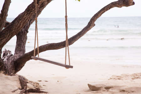 Swing under a tree. On the beach by the sea. photo