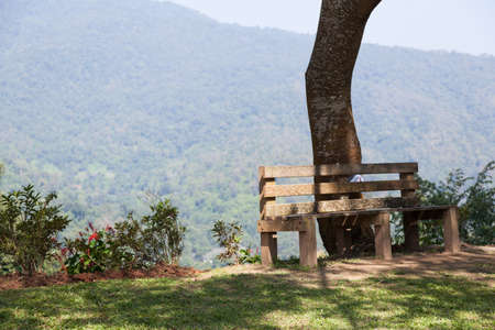 Bench under the tree Behind a high mountain covered with trees. photo