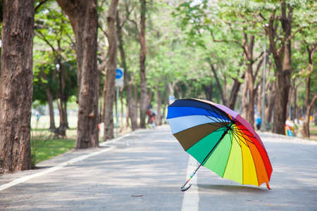 Multicolored umbrella resting on the pavement. Within the park. photo