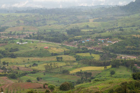 villagers: Agricultural areas in the mountains. Zoning, agricultural plantations on forest land from the villagers. Stock Photo