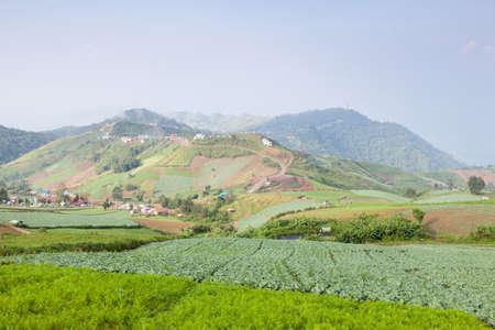 acreage: Acreage farm in the mountains. The villagers and the village on the mountain. Stock Photo