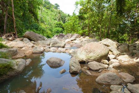 selva: Cascada en Koh Samui frente a la playa cascada en la isla y en una zona de parque con �rboles.