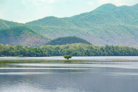 abundant: Tree in the dam Behind a high mountain There are abundant forests and cloud-covered sky. Stock Photo