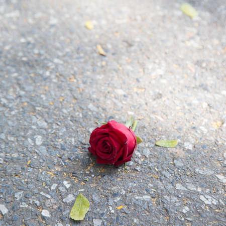 corazon roto: Rosa en el suelo Sinti�ndose aislado y solo rosa roja que cay� en el suelo.