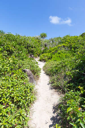 both sides: Passage on a small island to the viewpoint. There are trees on both sides along the way. Stock Photo