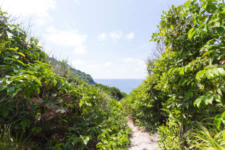 viewpoint: Passage on a small island to the viewpoint. There are trees on both sides along the way. Stock Photo