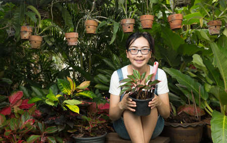 woman gardening: Woman gardening equipment and garden plants. Decorative garden care Stock Photo