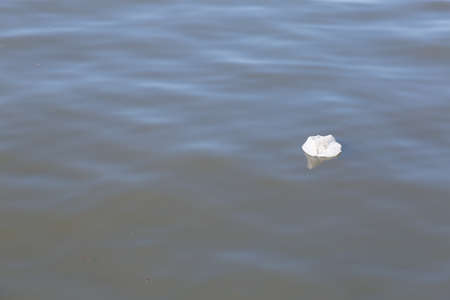 dumped: Waste at sea The problem of garbage dumped in the sea. The water pollution Stock Photo