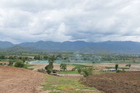 farming area: Arable farming rice. Planted area near the mountain. A cottage in the paddy fields. Stock Photo
