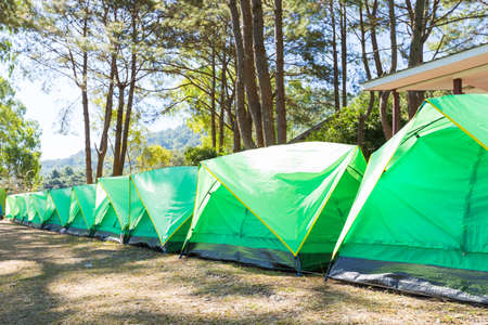 Green tent on the lawn. Leisure travel during the holiday park.