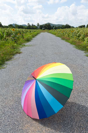 Multi-colored umbrella on the street. Sunflower field beside a road. Warmer weather and clear skies. Stock Photo