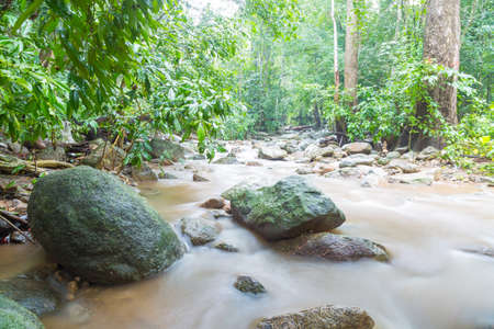Brook freshwater flow through rock with mossy in tropical rainforest