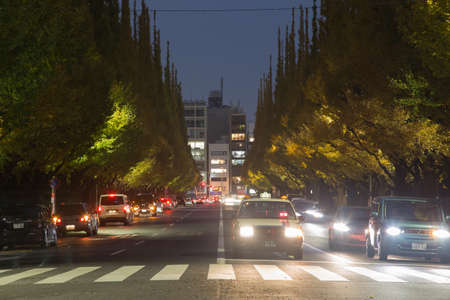 TOKYO,JAPAN-NOVEMVER 19,2016:Three separate roads in the evening. There are large pines on the roadside.