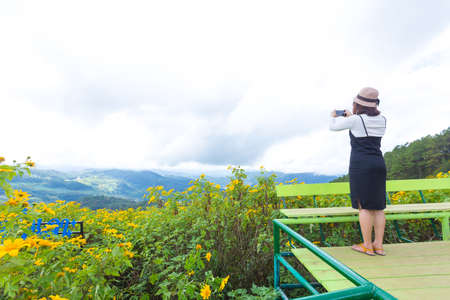 Woman take photo flower field on mountain and forest. winter season and cool in morning.