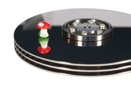 lucky hard disk with  fly agaric on it for succesful data recovery Stock Photo - 11567319