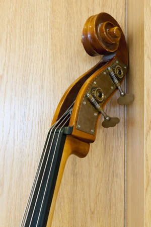 the top of a cello neck leans on a wooden wall photo