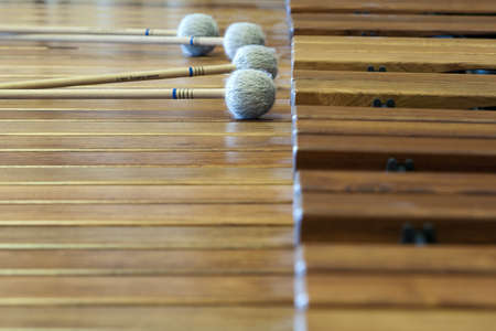 music wood xylophon with lying sticks on it