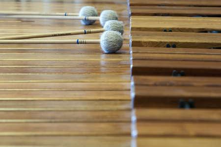 muziek hout xylophon met liggende stokken op het