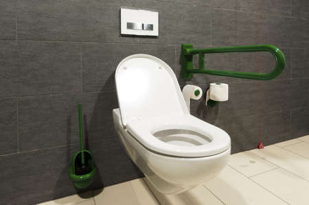 toilette: extreme wide angle of a white toilet for disabled pesrons