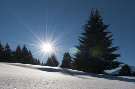 wonderful and dreamy winter scenery with a lot of snow, trees, sun and blue sky Standard-Bild