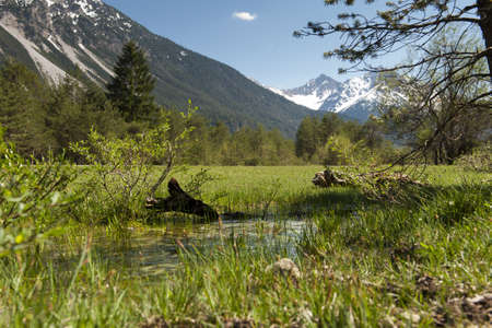 nice nature landscape with water, flowers, grass, meadows and tyrol mountains Stock Photo - 13662804