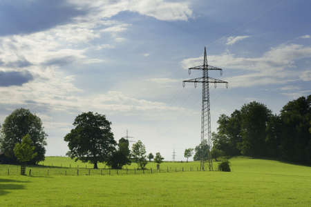 electricity pylon: idyllic nature with meadow, trees, sky and power poles for electricity