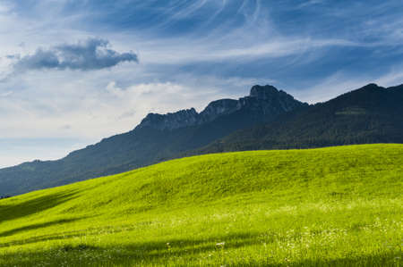 Sunny lush green meadow on the foothills of arugged mountain range, scenic background of natural beauty