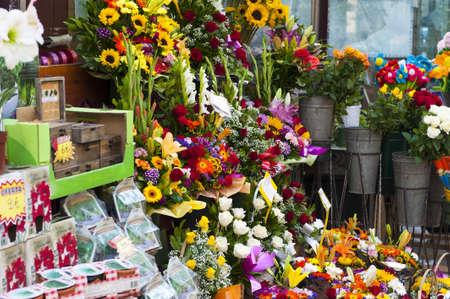 Kleurrijke serie van verse snijbloemen en bloeiende potplanten te koop in een bloemenwinkel