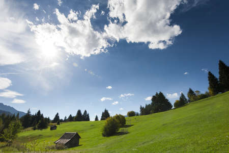 quaint: Scenic background of a beautiful green alpine pasture under blue sky dotted with trees and a small quaint wooden hut