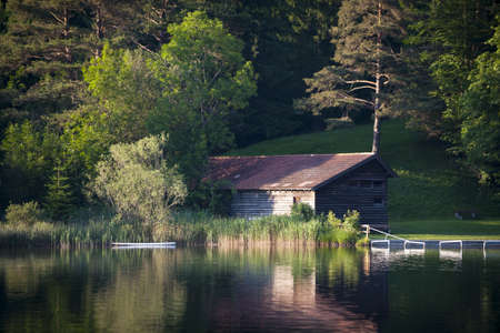 still water: hut grown in between trees and bushes at idyllic lake