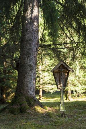 memorial cross: croce commemorativa in legno in piedi in foresta di autunno