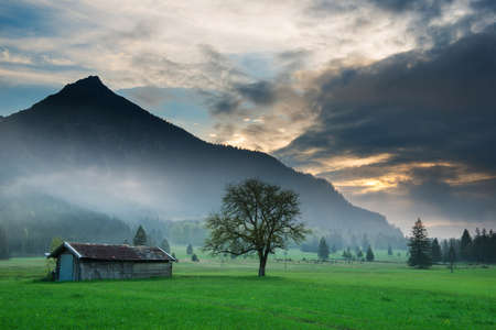 old wooden hut with single tree at dramatic tyrol sunset photo