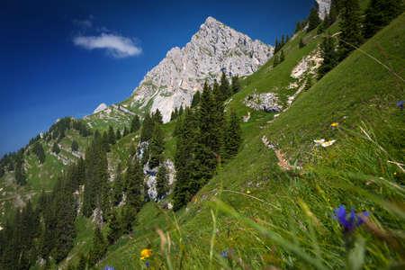 mountain peek: steep mountain meadow at tyrol austrian alps Stock Photo