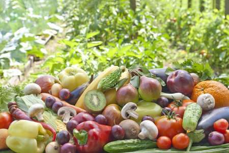 Assotrment of fruits and vegetables agaist a background os kitchen garden