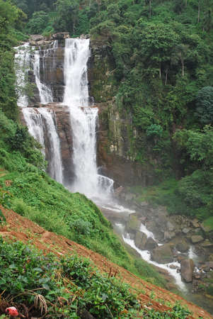 Deep forest Waterfall in Sri Lanka photo