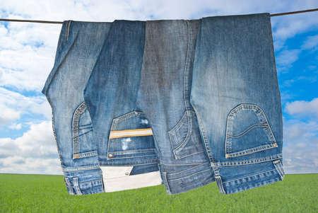 denim: Unos jeans azules de secado en el prado verde en d�a soleado Foto de archivo