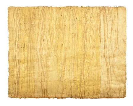 Blank of old paper, papyrus, isolated on white photo