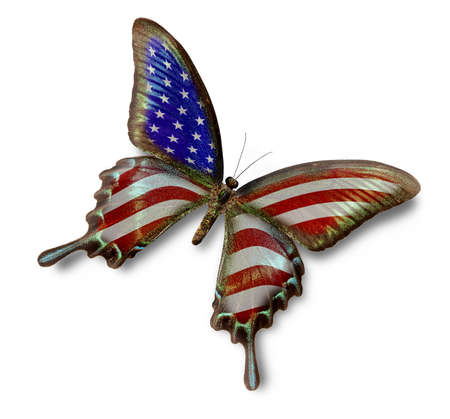 american butterflies: USA flag on butterfly isolated on white