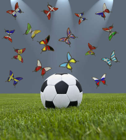 Soccer ball in green grass and butterflys with European flags  photo