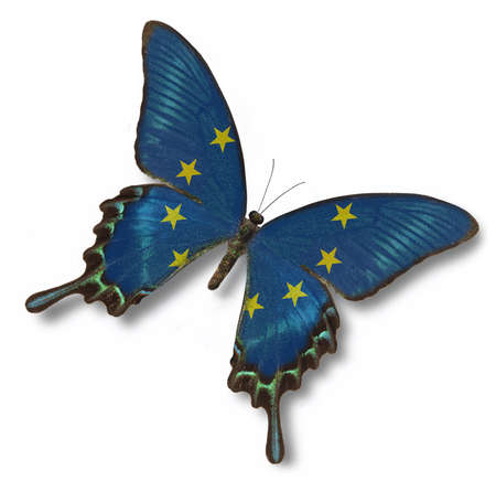 European Unity flag on butterfly isolated on white photo