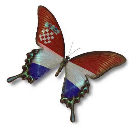 bandiera croazia: Bandiera Croazia farfalla isolato su bianco