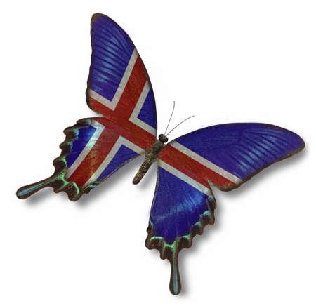 flag of iceland: Islandia bandera en la mariposa aisladas en blanco