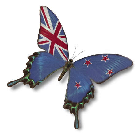 New Zealand flag on butterfly isolated on white photo