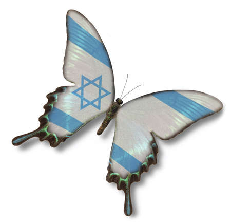 Israel flag on butterfly isolated on white photo