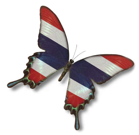 Thailand flag on butterfly isolated on white photo